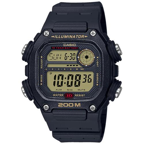 CASIO Collection Men | DW-291H-9AVEF