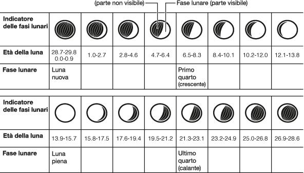Visualizzazione delle fasi lunari tecnologia orologi for Que fase lunar hay hoy