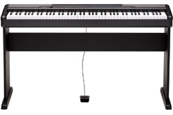 Compact Digital Pianos - Product Archive | CDP-100