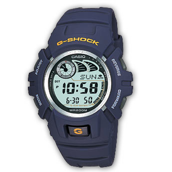 G-SHOCK Classic | G-2900F-2VER